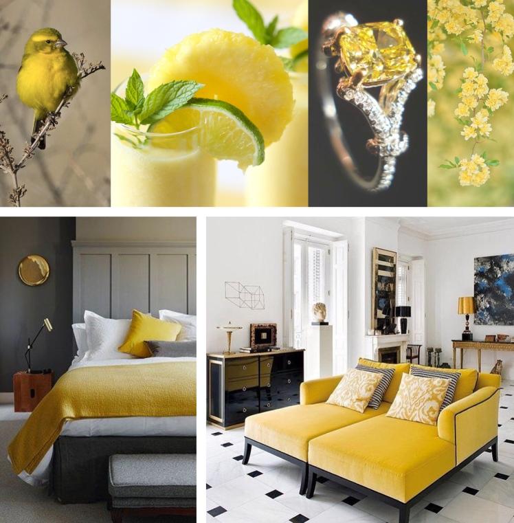 15 Primrose Yellow